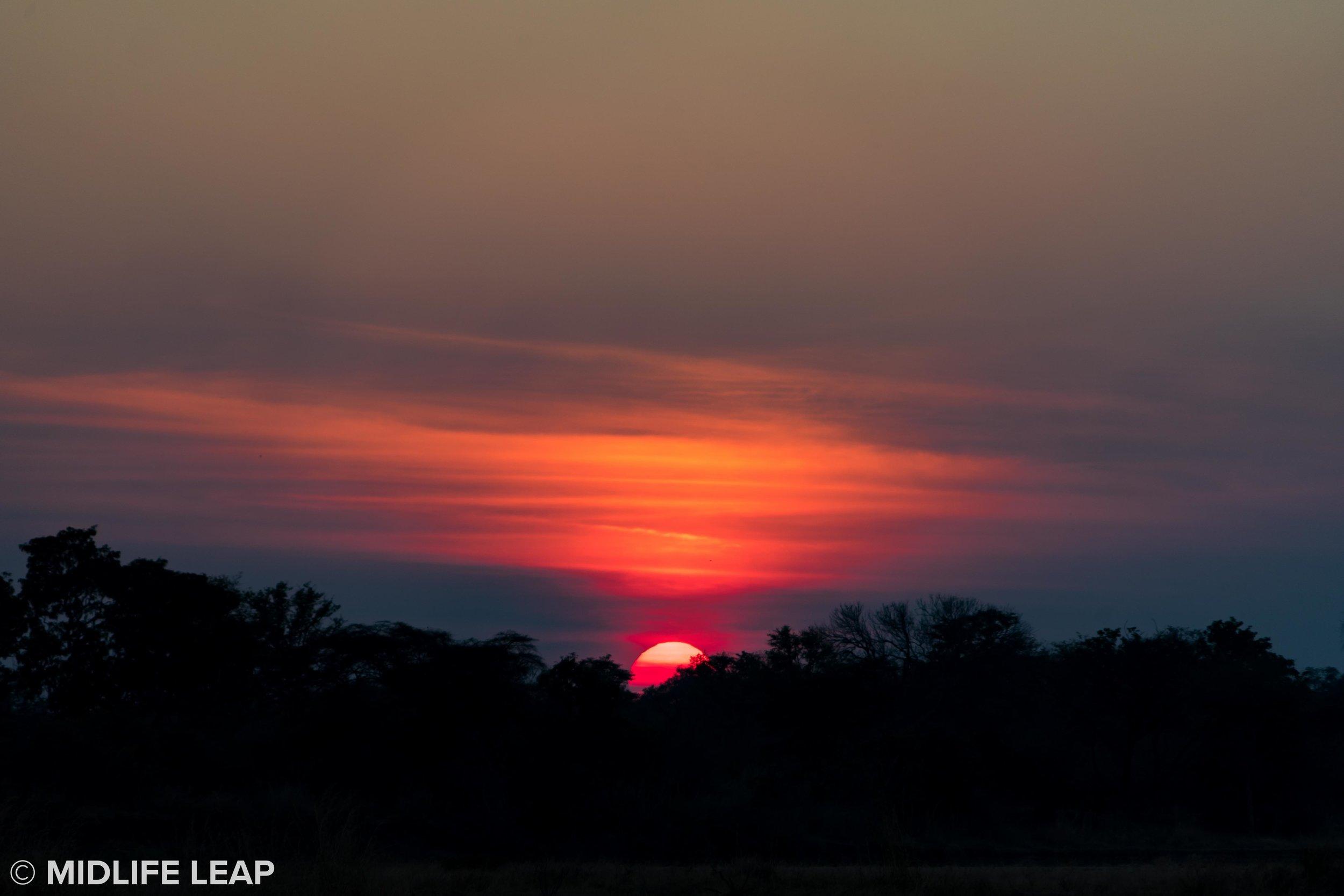 mwaleshi-north-luangwa-walking-safari-sunset.jpg