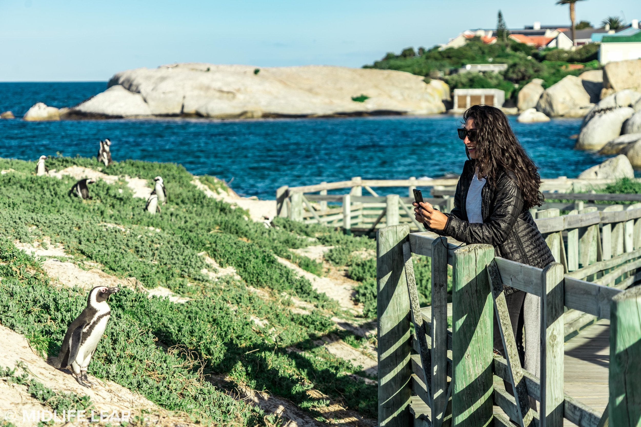 midlifeleap-south-africa-boulder-beach.jpg
