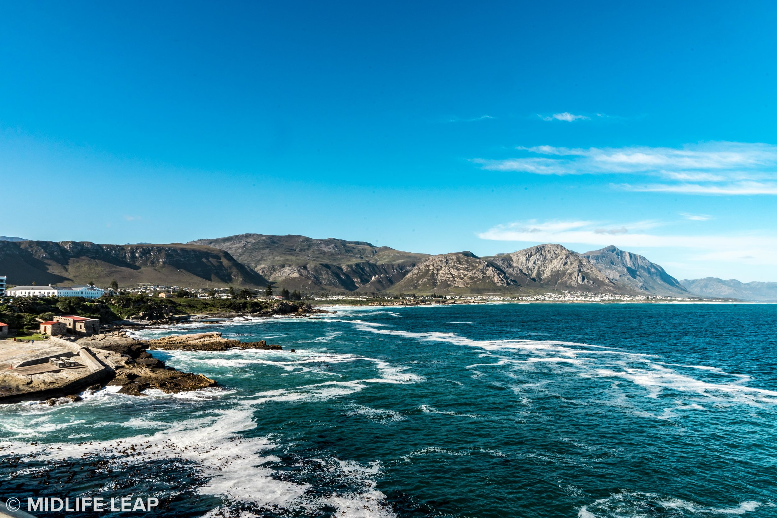 Hermanus! I swear there were tons of whales!