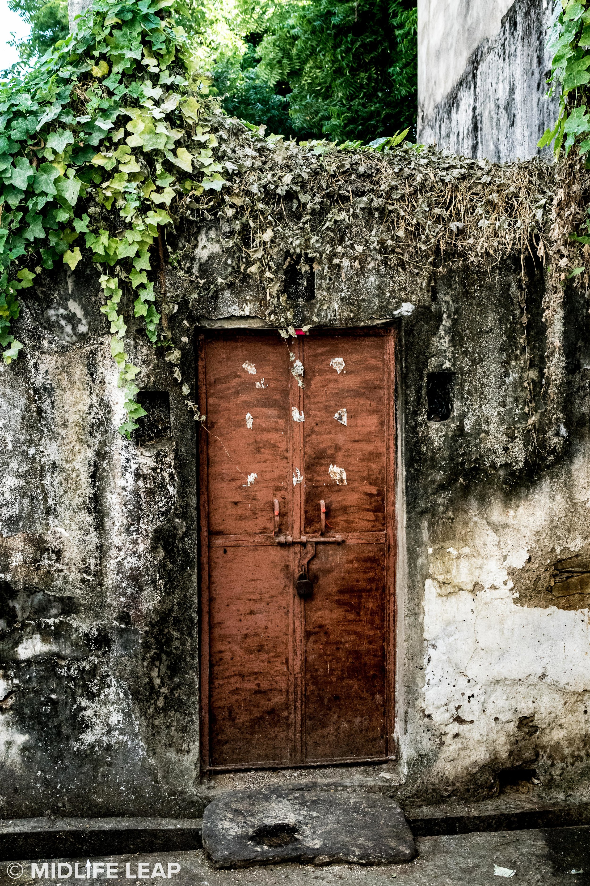 street-view-doors-of-india-udaipur.jpg
