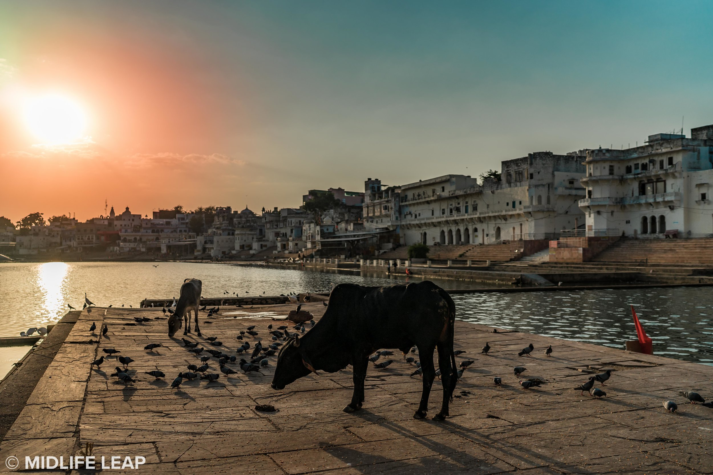 Pushkar, while a tiny city, has so much to offer, especially at sunset