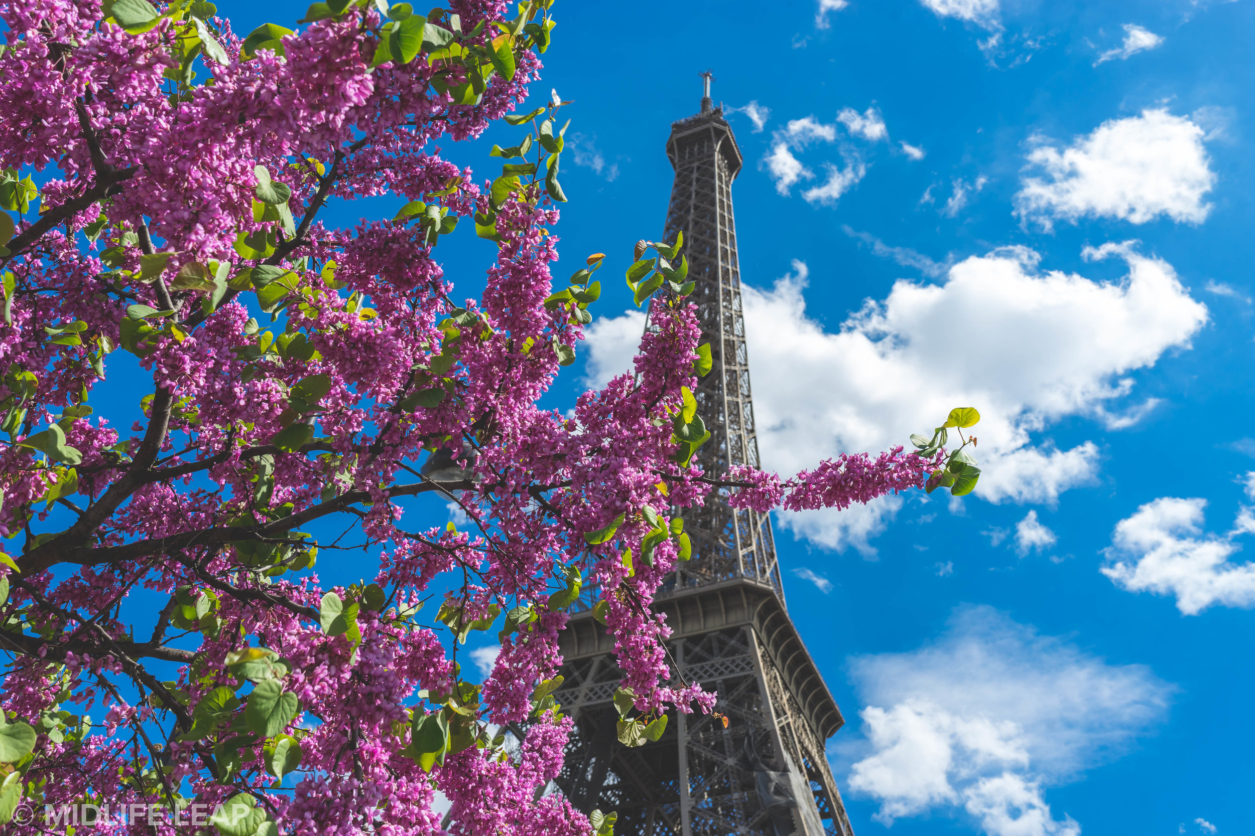 tips-for-visiting-the-eiffel-tower