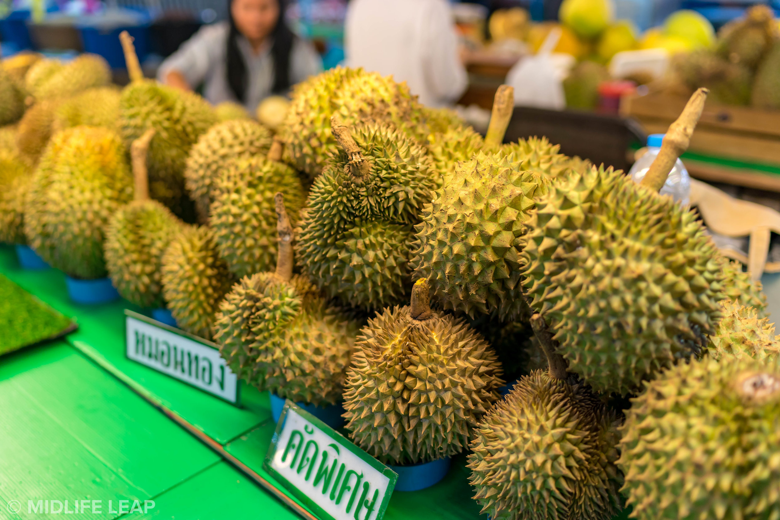 where-to-eat-durian-in-chiang-mai