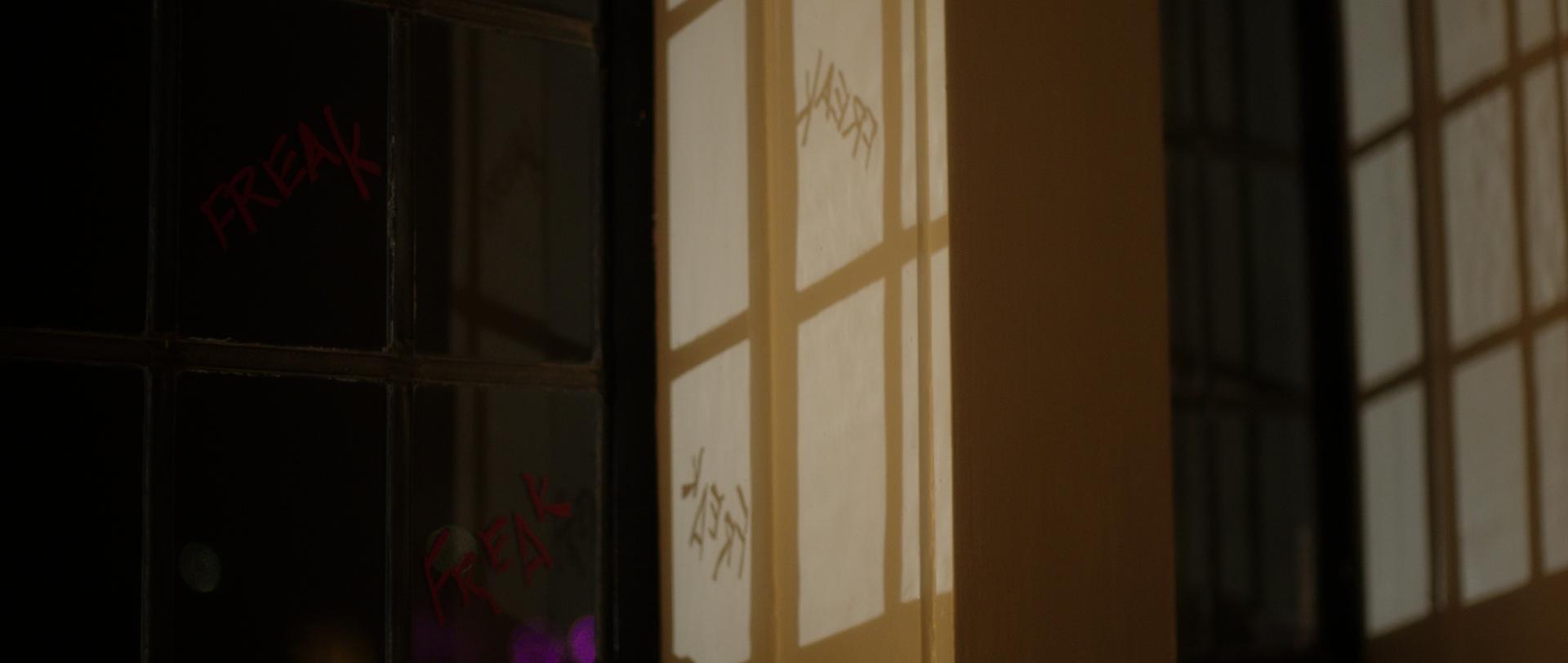 27_Freak Window_CROP.png