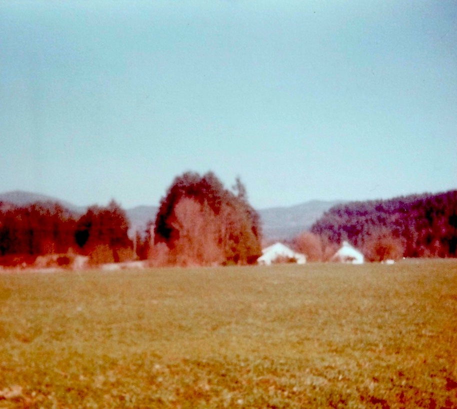 Hector and Florence Verschaeve's dairy farm butted against our main pasture.