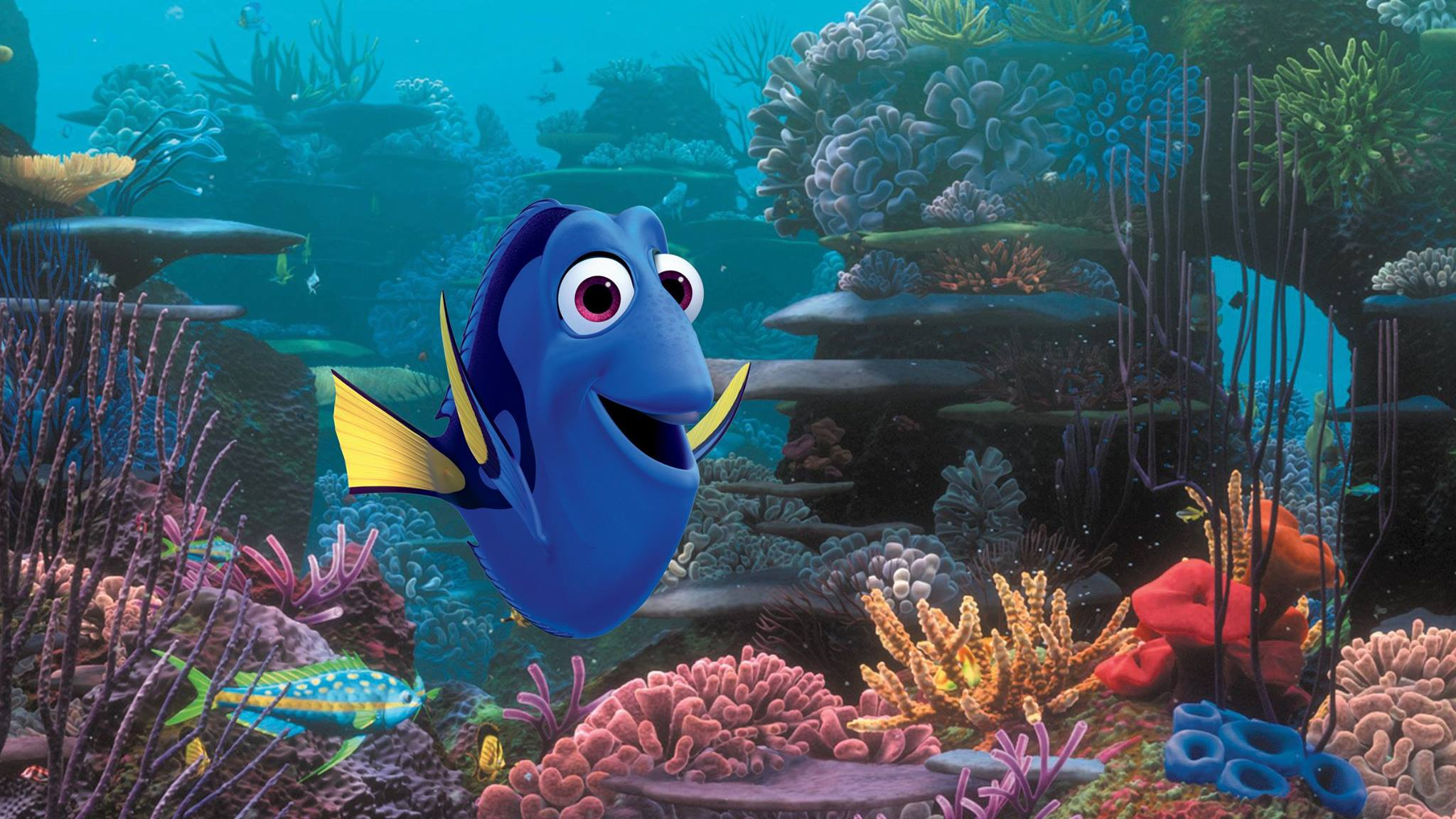 Finding Dory (6/17/16)