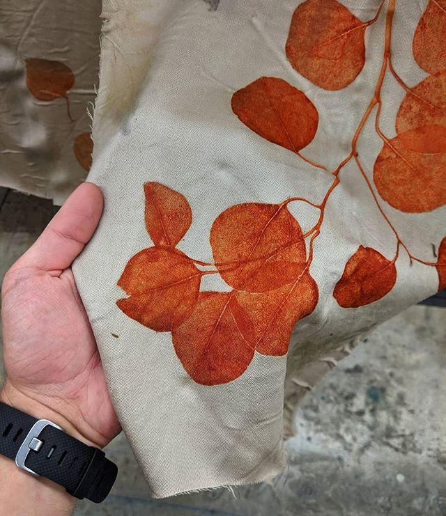 Seeing Red// Eucalyptus on Wool Swipe 👉 for detail 📸