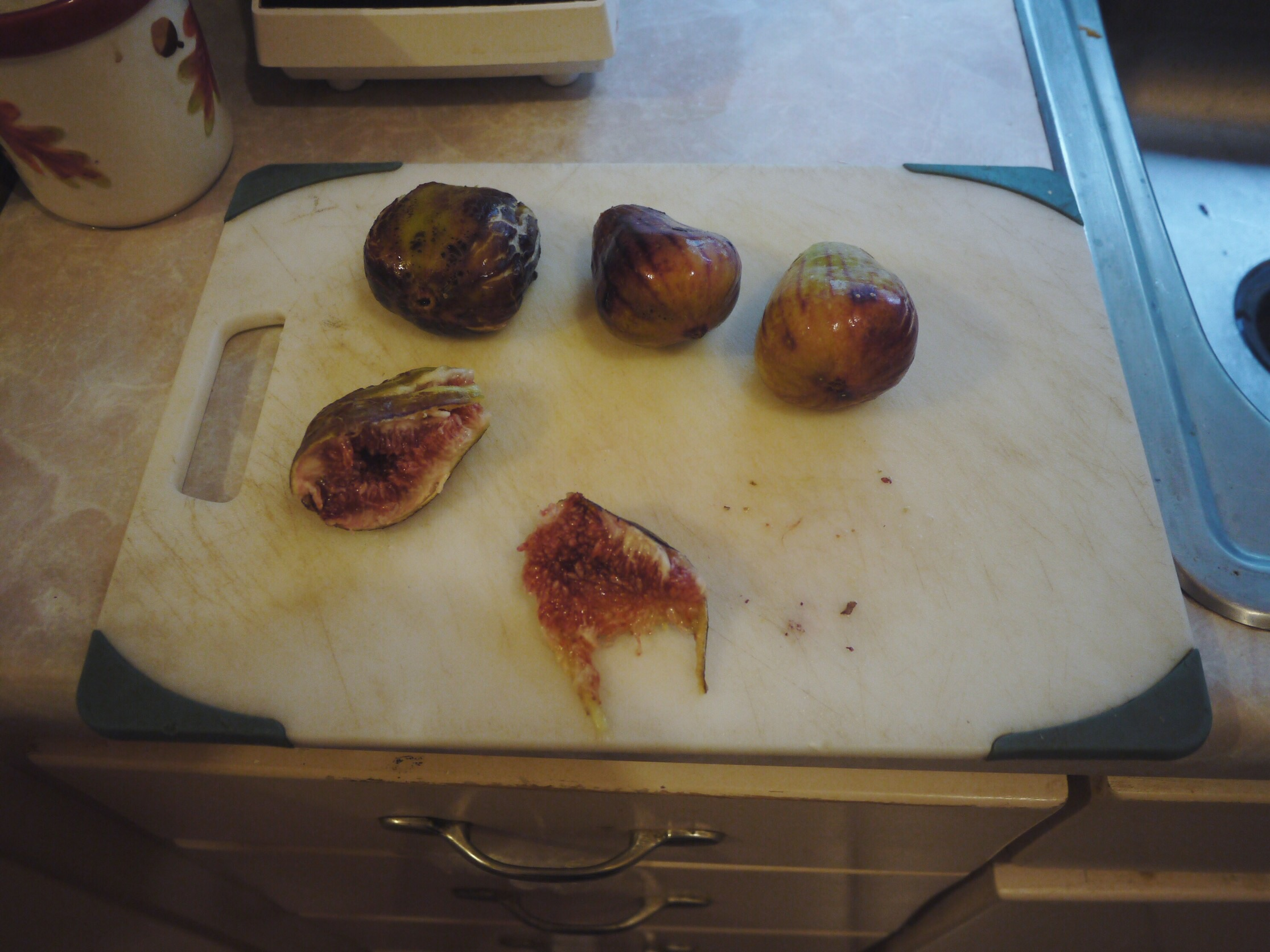 Gabino's fresh fig bounty.