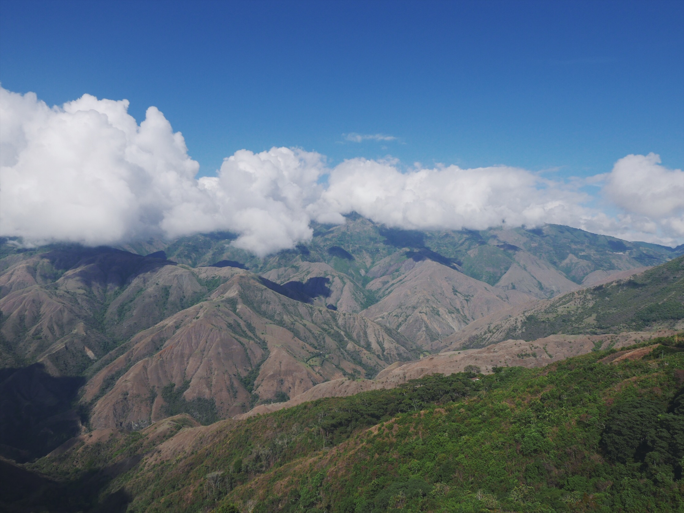 The Andes split into three separate mountain ranges in Colombia. The Cordillera Occidental, Central and Oriental. Our track has us eventually going up and over all three.