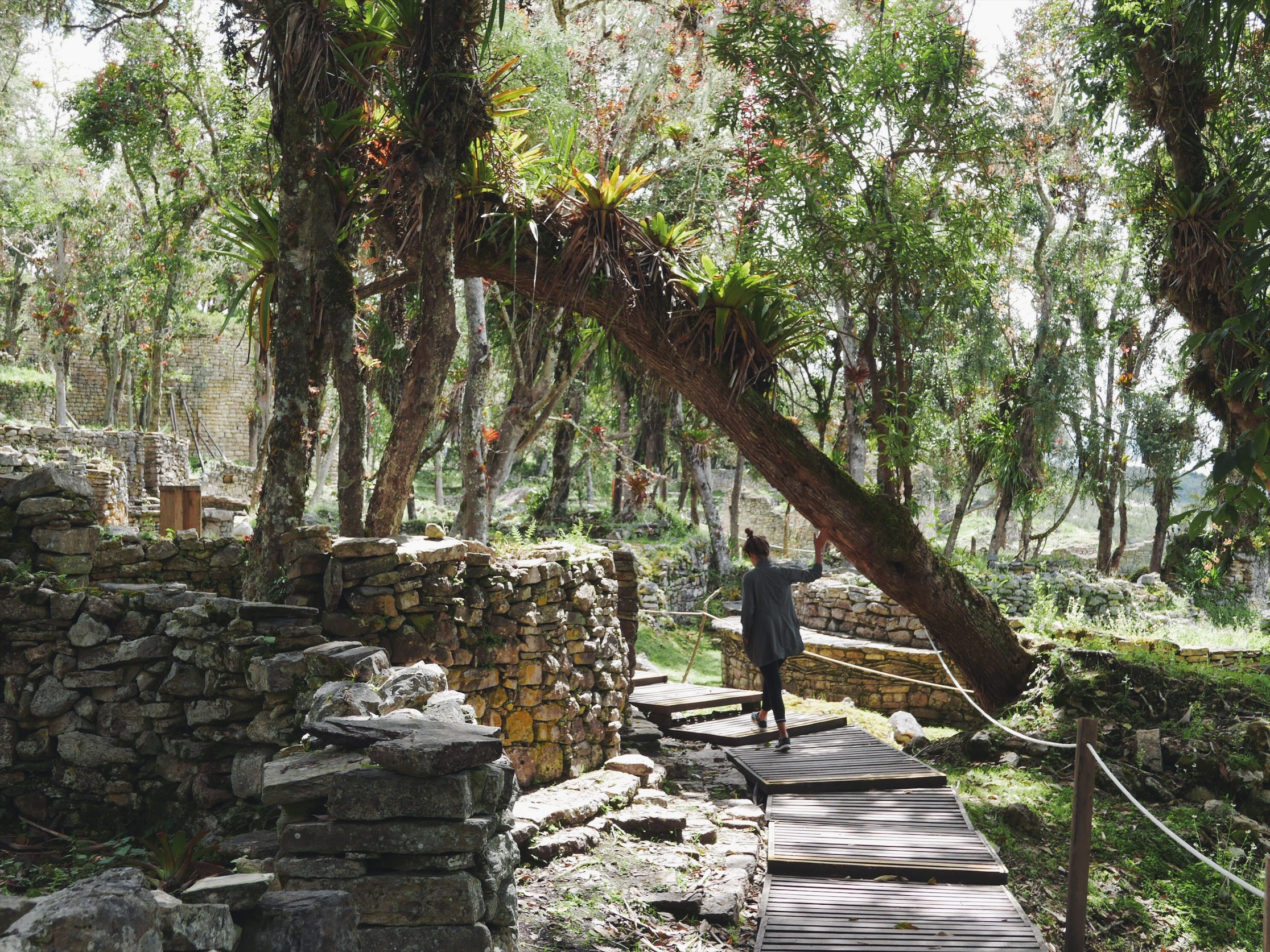Very different from the highly-manicured Machu Picchu, this place has been overgrown with tree roots and foliage.