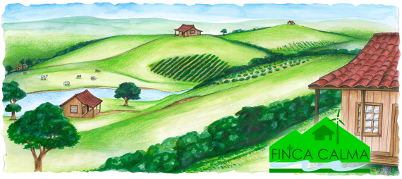 Early artist rendering of home lots on Finca Calma.   Finca Calma is your   opportunity to own an earth conscious home  surrounded by farm land, gardens, nature paths,  wellness center and a recreational clubhouse  in tropical  Costa Rica.