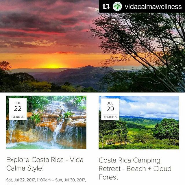 These two #vidacalmawellness retreats are officially happening this summer! They're back to back, so you can come to one or both. @nealmfharper and I could not be more excited to have a chance to bring some groups to the farm so you can see what we are always talking about. 😍 We want to share it with you! Click the link in my profile for all of the details and let me know if you have any additional questions. #vidacalmatours @vida.calma #costaricaretreats #summer2017 #miparaiso #fincacalma #arenalvolcano #playahermosacostarica #sarchi