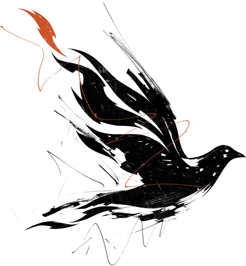 fotd.dove.work.jpg
