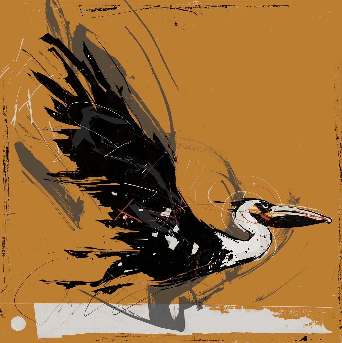 pelican.work.jpg