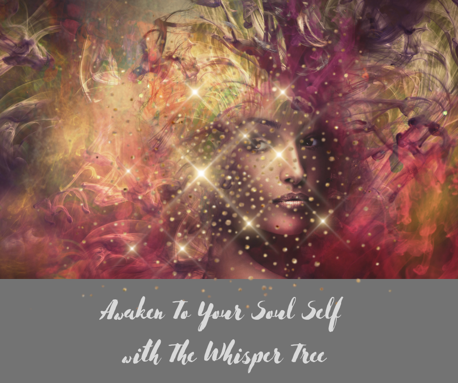 - Experience unique and magical meditation sessions here at The Whisper Tree.Learn how to connect with your higher self, get guidance and spiritual wisdoms.Be inspired, empower yourself and live in alignment with Soul and the Universe.