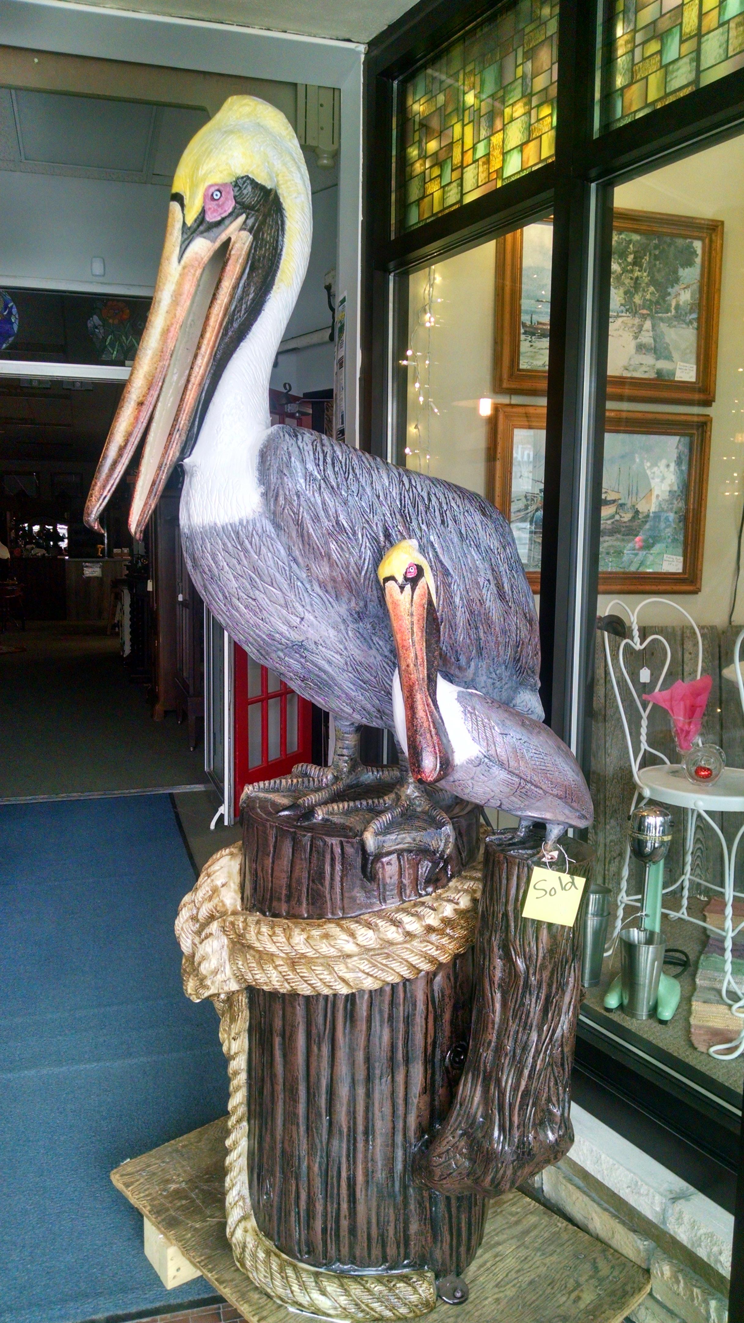Baby Mama Pelican.jpg