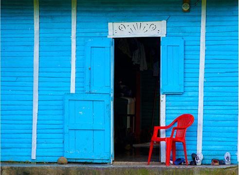 Dominican Domestic.jpg