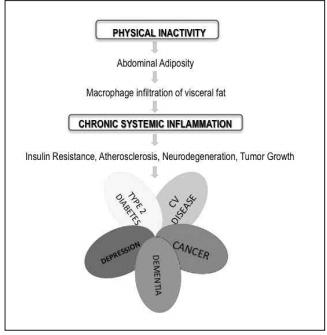 Diseasome of Physical inactivity:     CITATION  Pra13 \l 1033    (Pratesi, Tarantini, & Di Bari, 2013)
