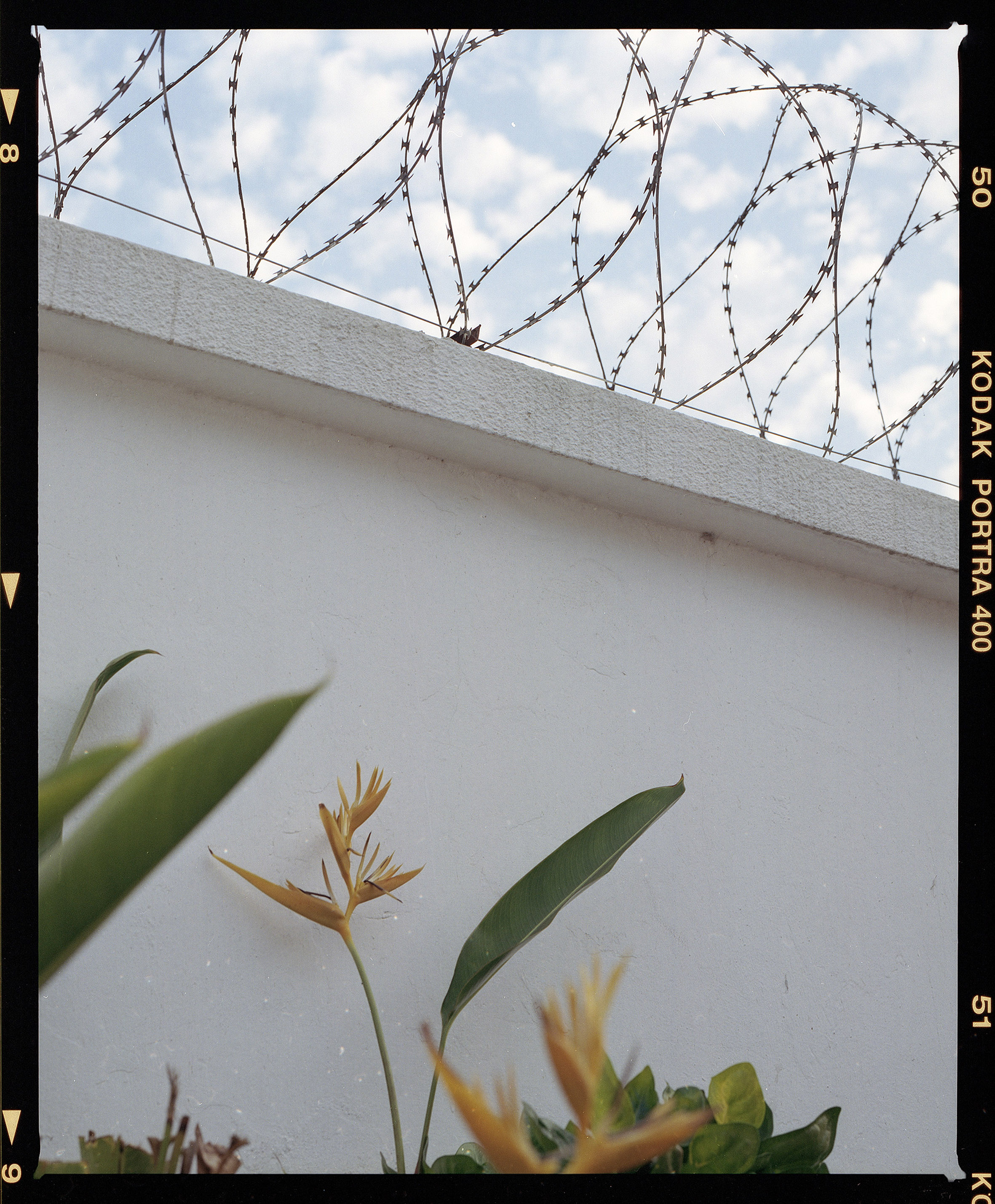 accramauer.jpg