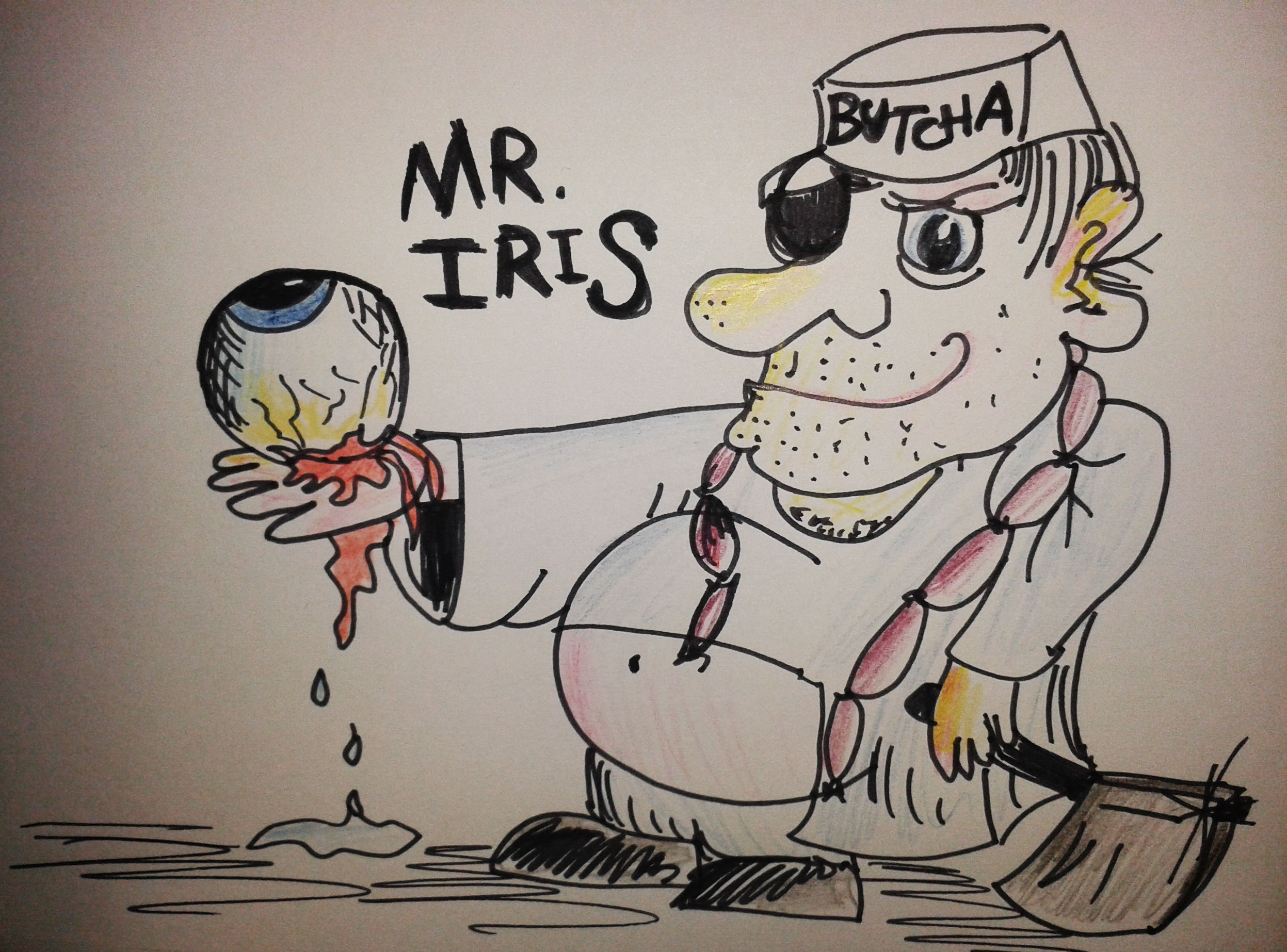 Mr Iris - Freehand Illustration by Whitney Edwards.jpg