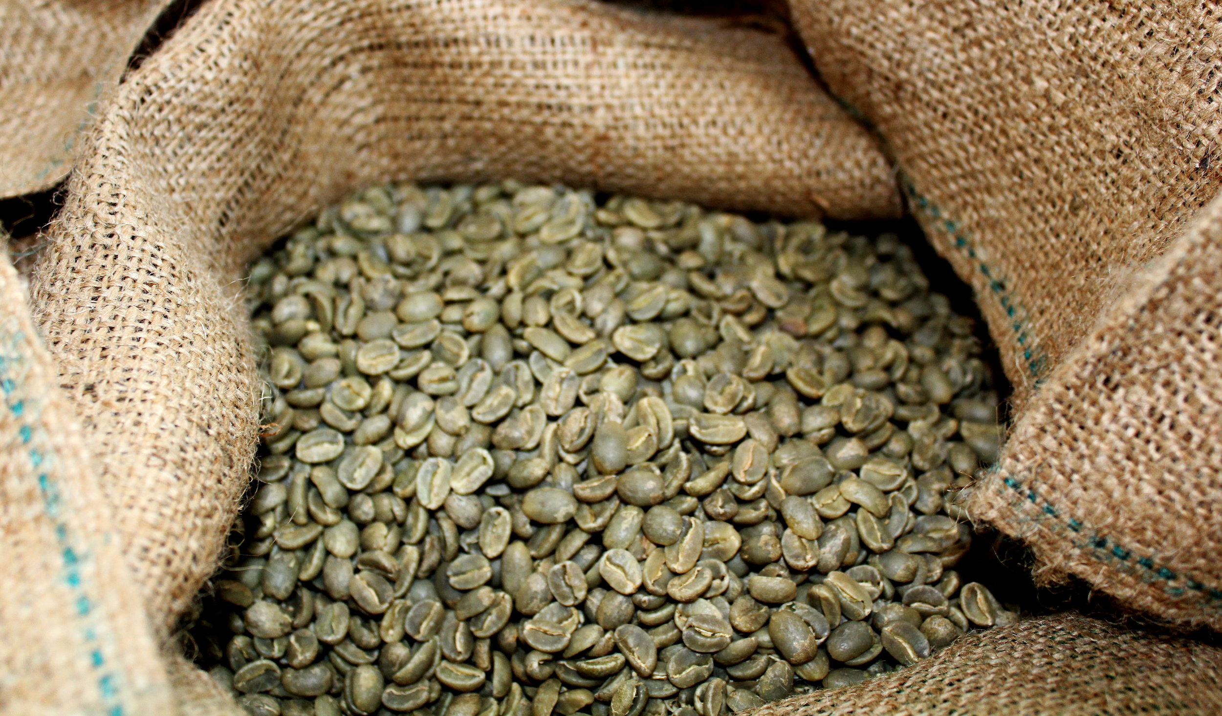 The decaffeination process is applied to green coffee beans, before being roasted. PHOTO: Dayva Keolanui