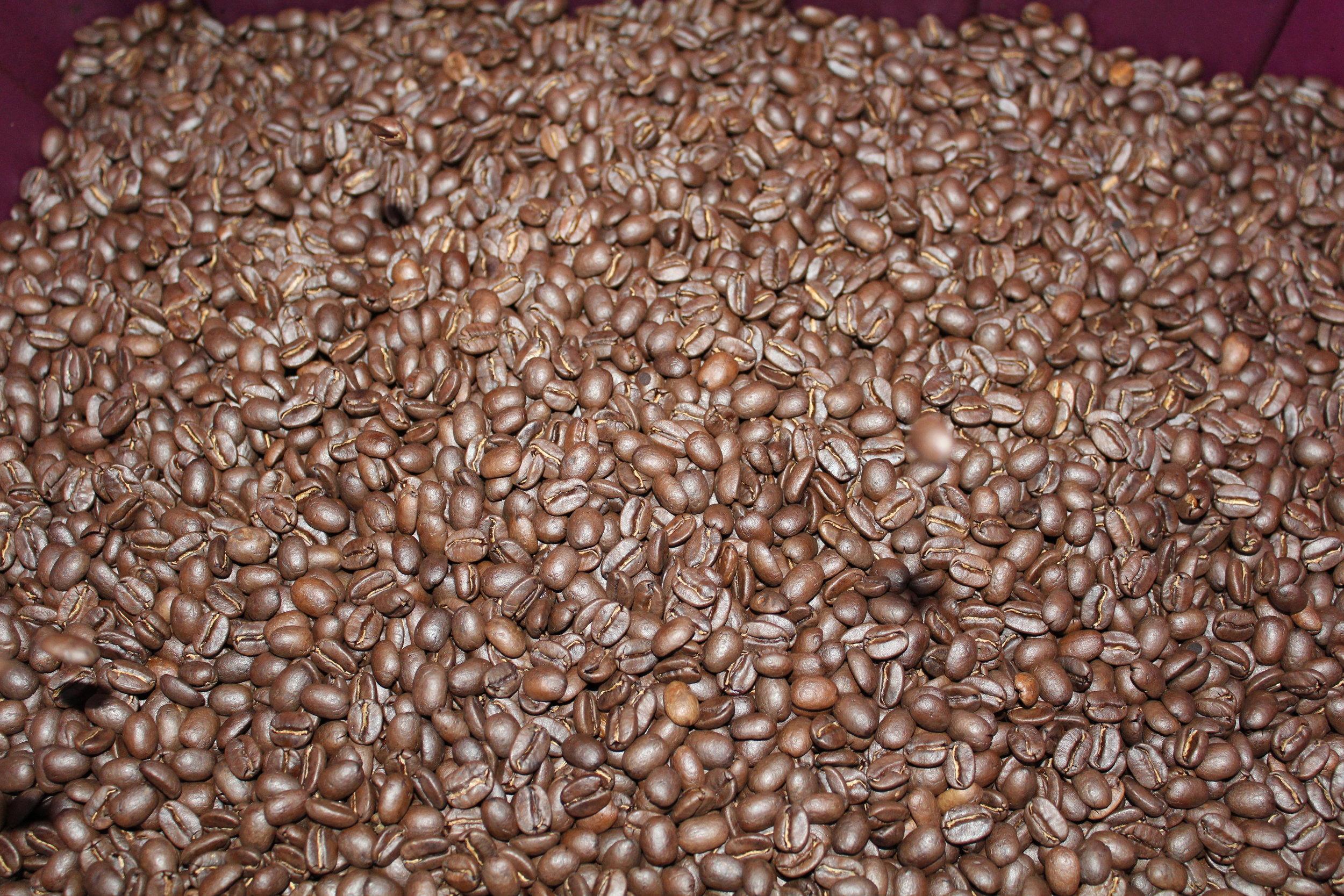 Kona Coffee and Tea Company_Roasted Coffee Beans.JPG