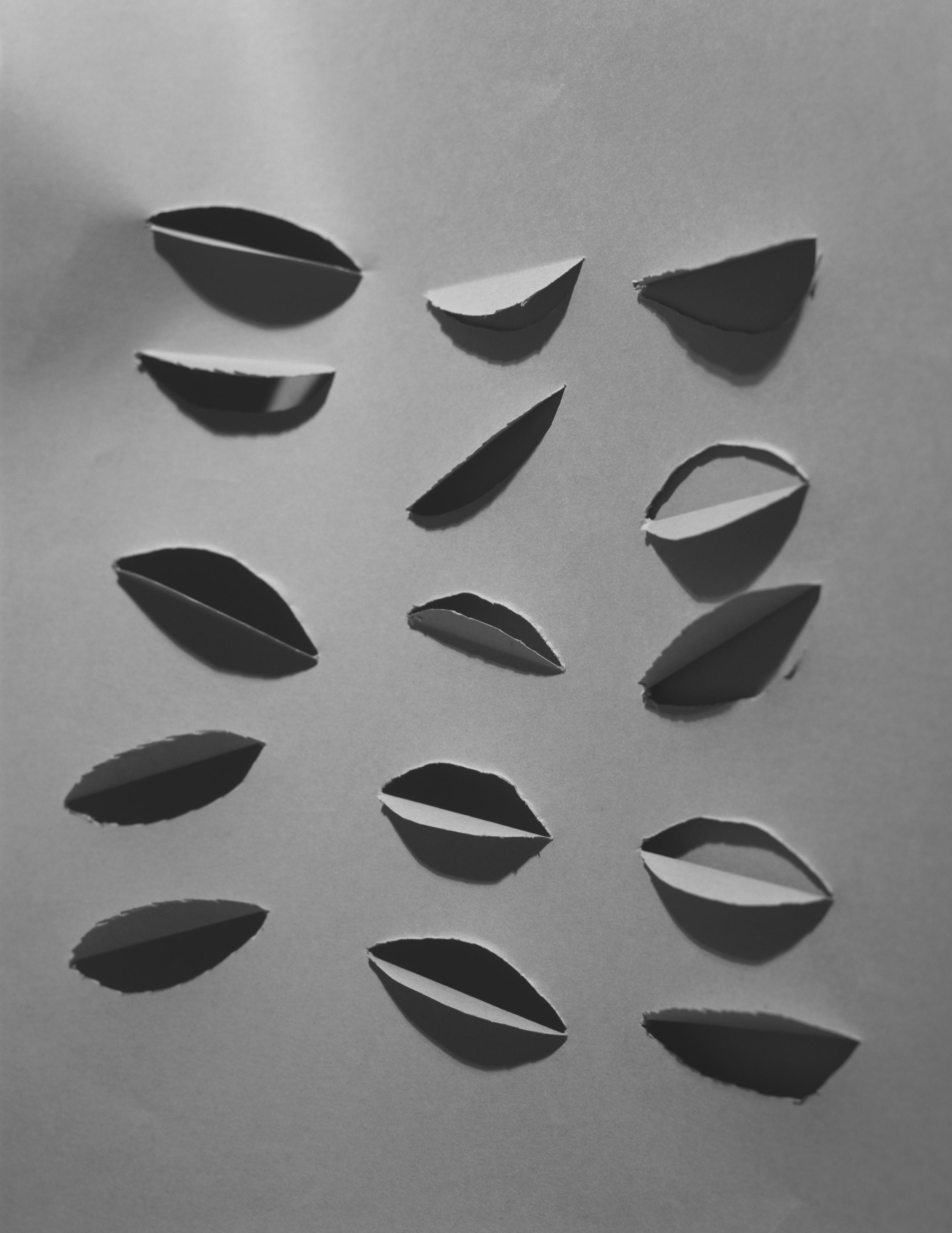 III (Cuts), C-Print, 17 x 22 inches, 2011