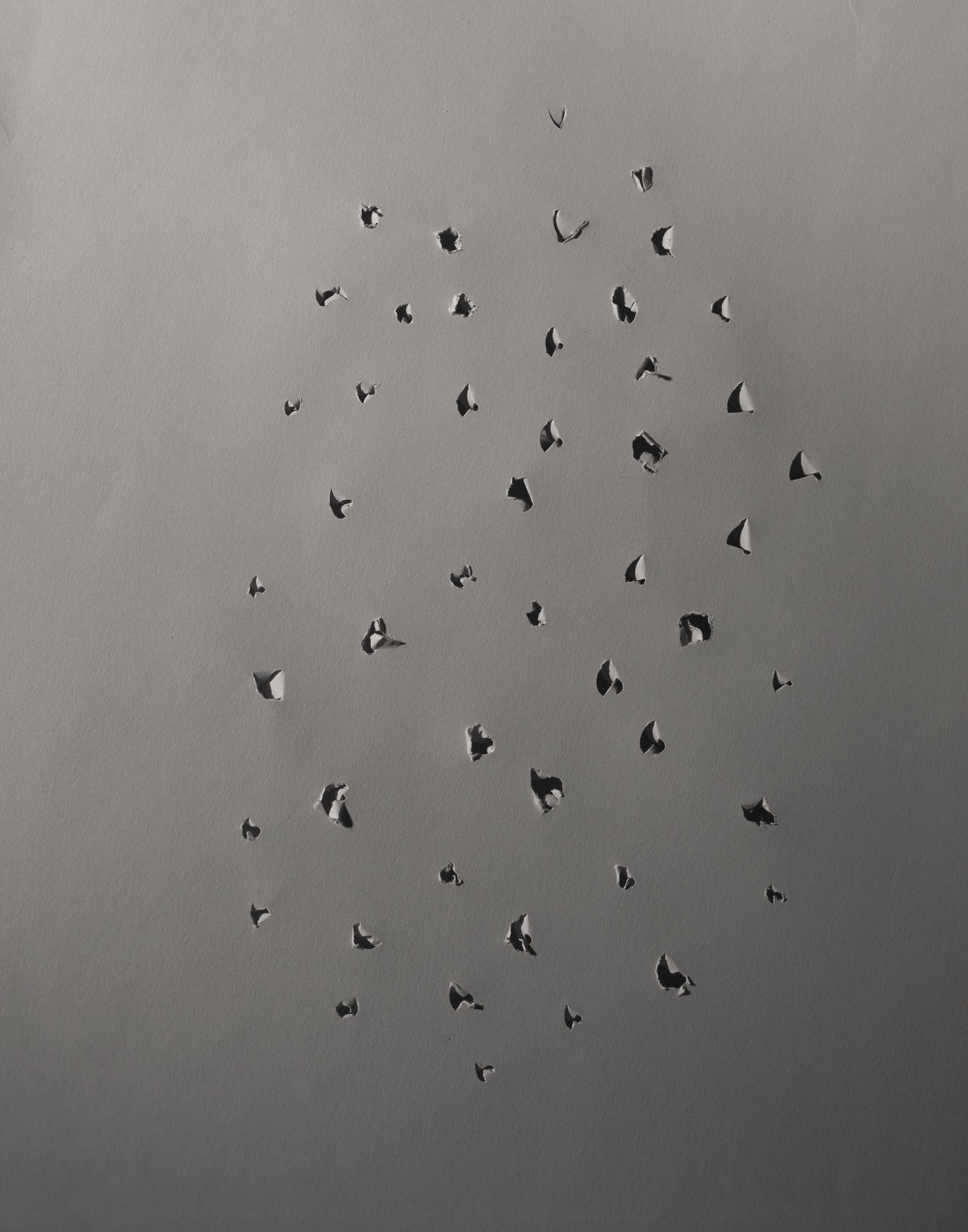 Holes, C-Print, 35 x 27.5 inches, 2014