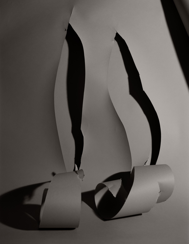 CUTS , 26 x 20 1/4 inches, Pigment print, 2018