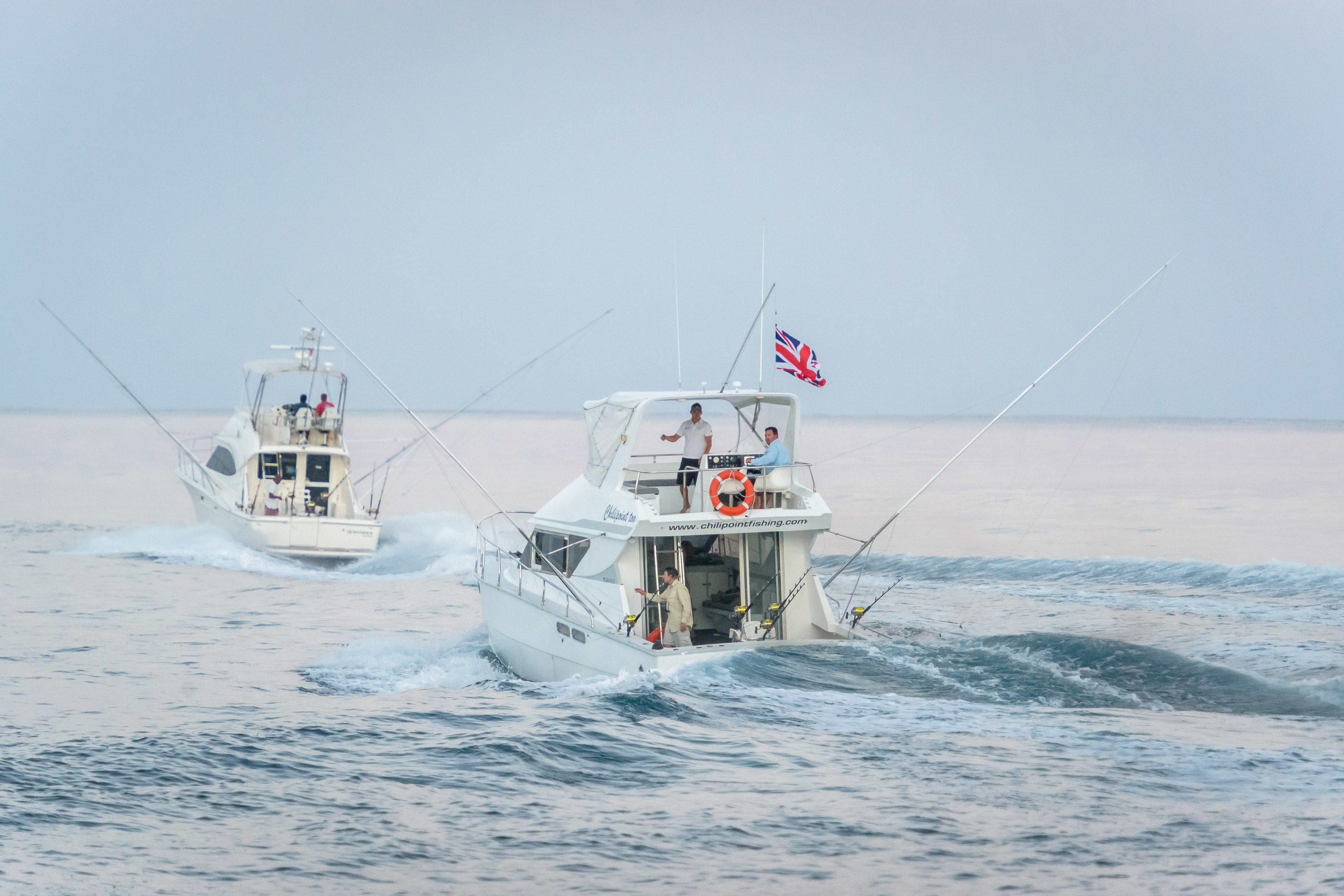Mru Billfish Release - Day2-23 - Copy.jpg
