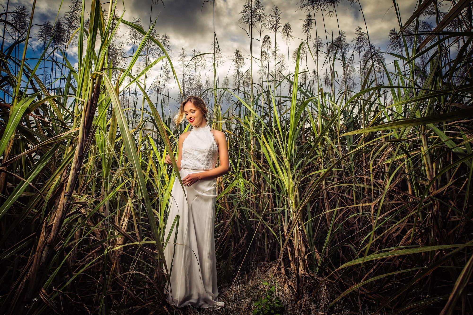 Sugar cane photoshoot Bridal session-1.jpg
