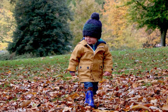 little boy playing in fall leaves