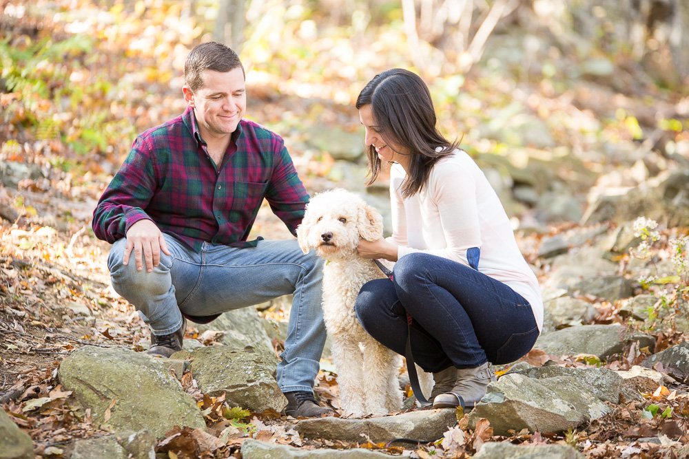 Engaged couple in Shenandoah National Park with their labradoodle | Northern Virginia Engagement Photographer