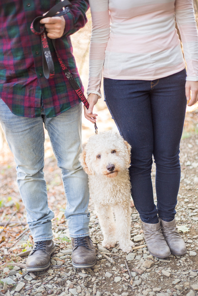 Engagement picture ideas with dog | Hiking engagement shoot