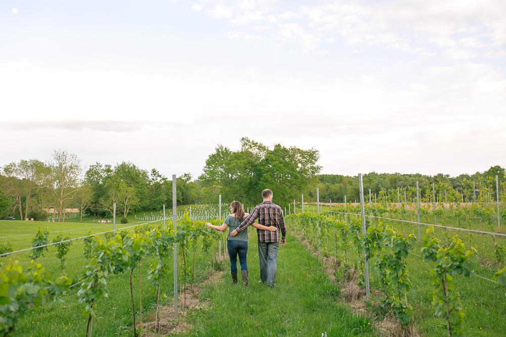 Mountain Run Winery   Culpeper, VA