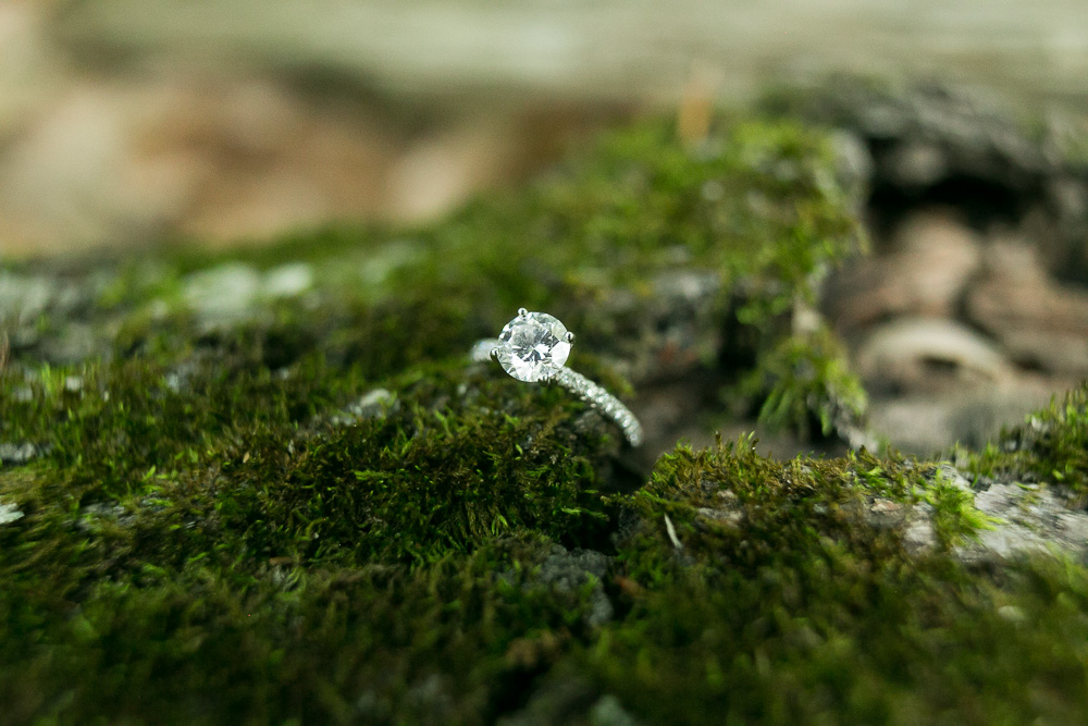 Engagement ring in moss | Forest engagement photography | Northern Virginia Outdoor Wedding Photographer