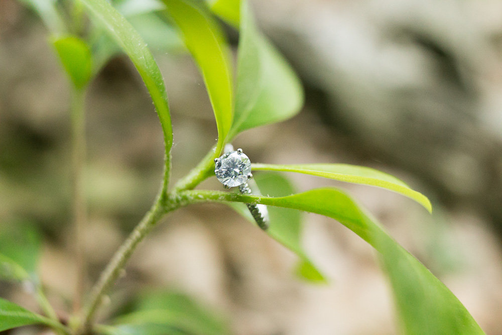 Engagement ring | Outdoor engagement photography | Northern Virginia Outdoor Wedding Photographer