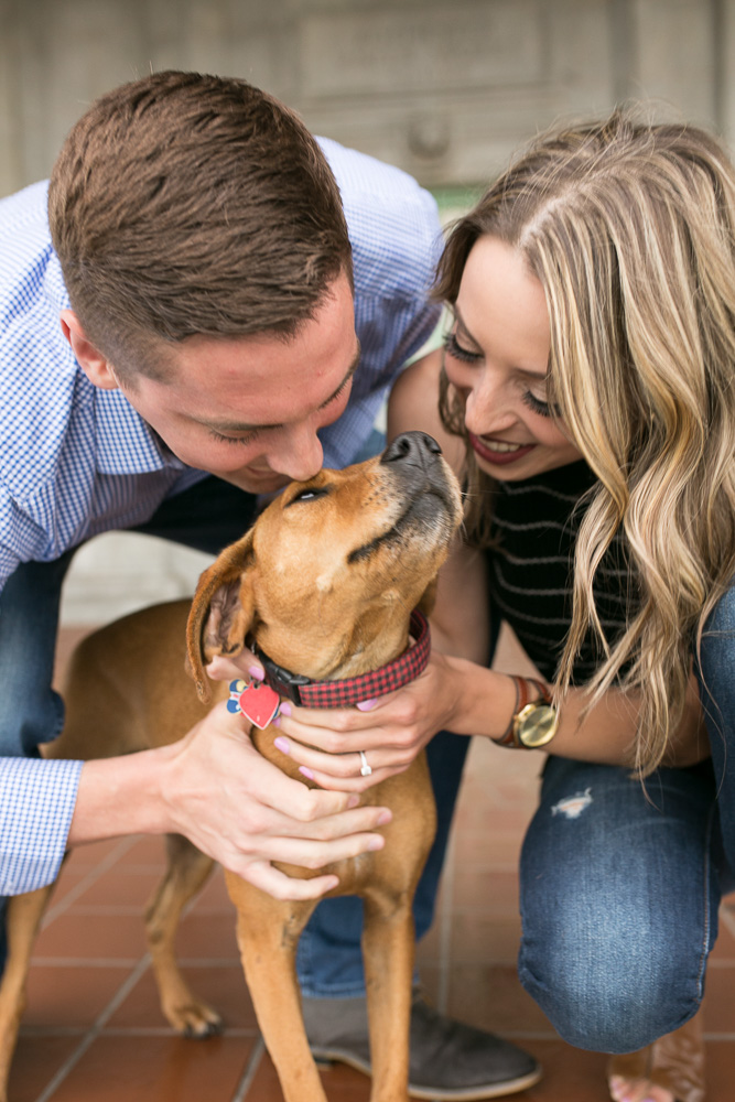 Pet photographer | Rochester NY Photography