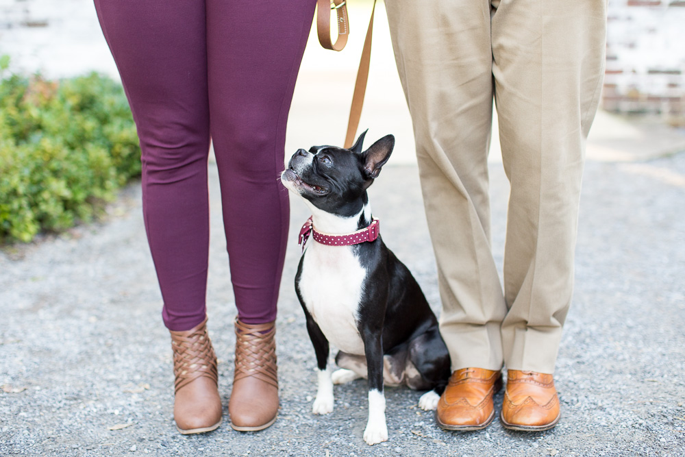 Cute dog and parents' feet engagement photo | Northern Virginia Dog Photographer