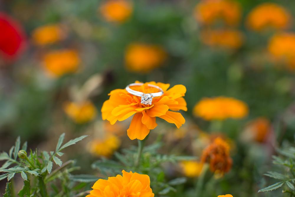 Engagement ring on orange flower at C.M. Crockett Park