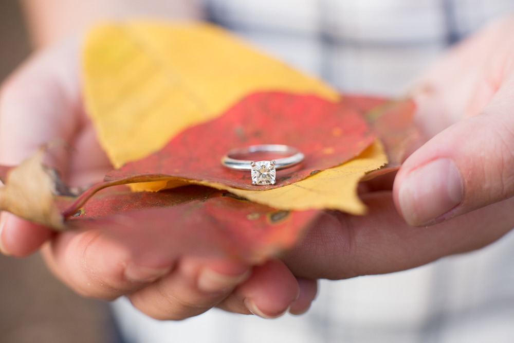 Fall engagement photos in Northern Virginia