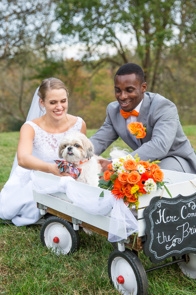 Bride and groom with the wedding dog in Culpeper | Northern Virginia Pet Photographer