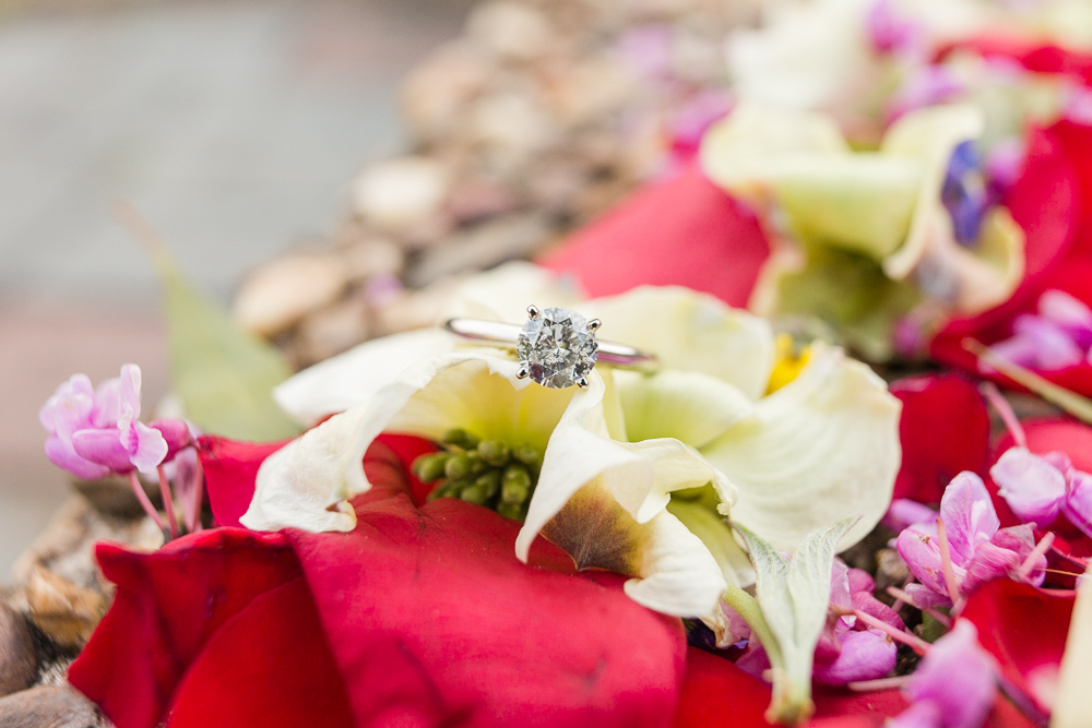 Engagement ring photo with flower petals | Meridian Hill Park Engagement Photography