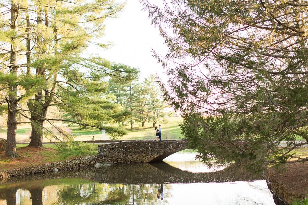 Beautiful landscape engagement photo in Warrenton, VA | Warrenton Virginia Wedding Photographer