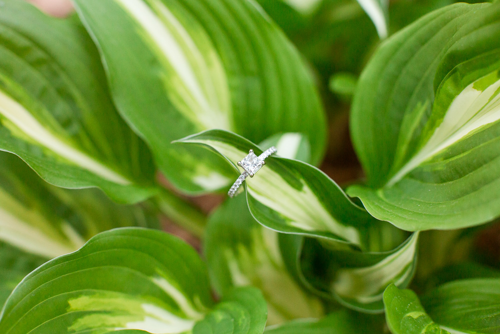 Diamond engagement ring from Blue Nile