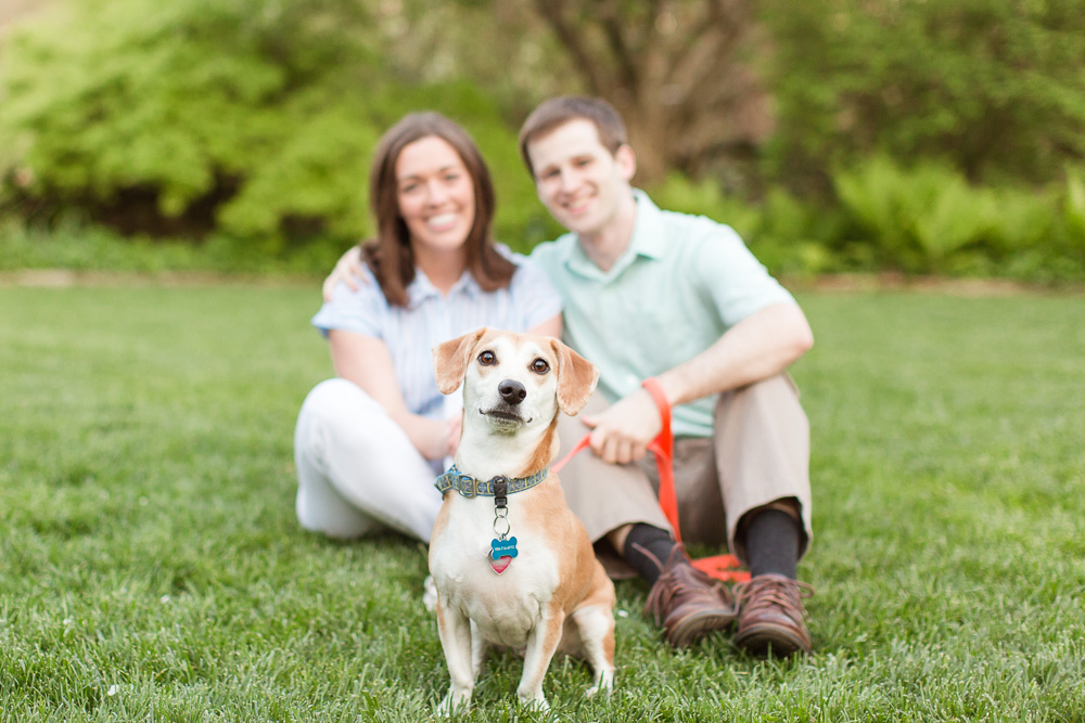 Cute rescue dog with his engaged parents behind him | Garden engagement photos in Warrenton, Virginia