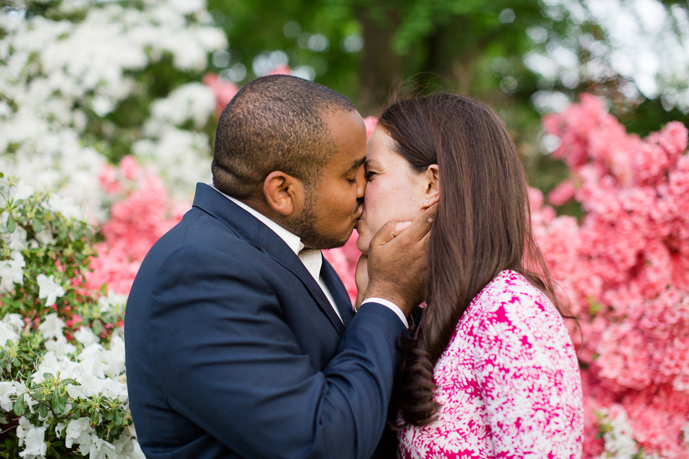 Kissing in front of the pink and white bushes in Central Park | Best places for engagement pictures in Central Park