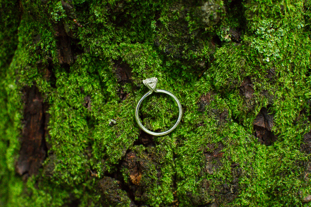 Solitaire engagement ring with moss during a hiking engagement photo shoot in Northern Virginia