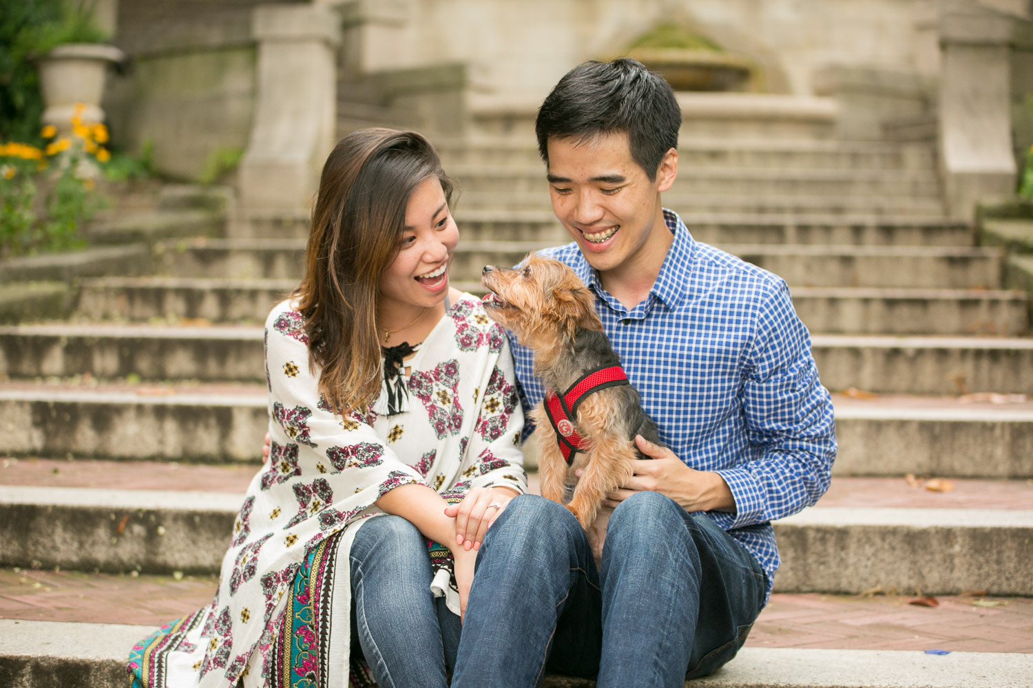 Washington DC engagement pictures with Yorkie