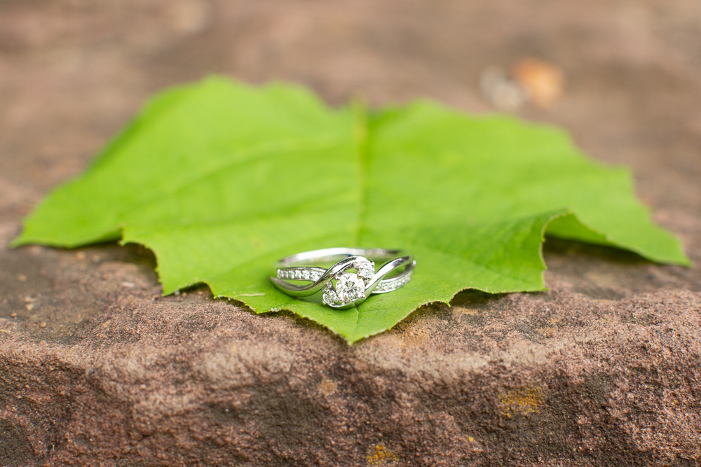 Engagement ring on a leaf at Manassas National Battlefield